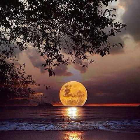 PEACE ~ SATURDAY - LOVELY MOON SCAPE ~